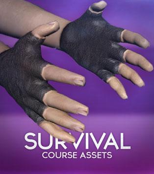 Survival Game Assets